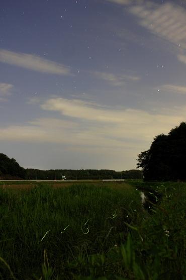 夜空の星と地上の星 2008年6月14日 城里町某所にて