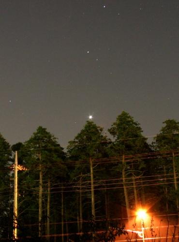 梢の先の金星