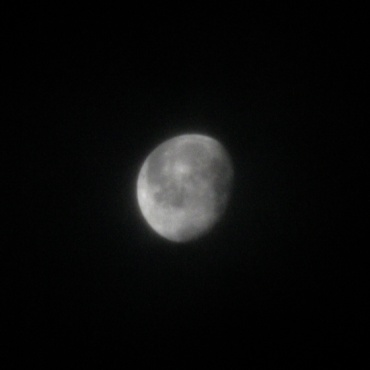 2008年9月19日 早朝の月