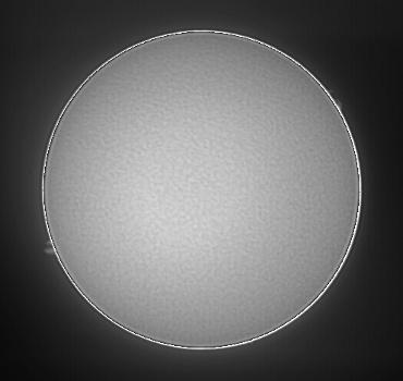 Hαによる太陽像 2009年3月2日