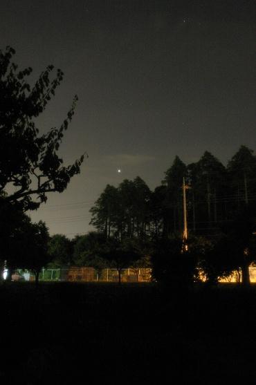 明けの明星 2009年8月19日 自宅にて