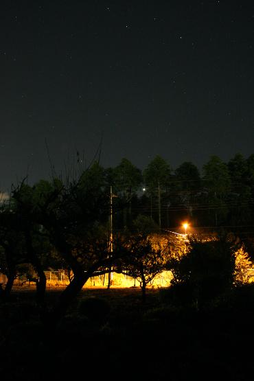 明けの明星 2012年10月24日