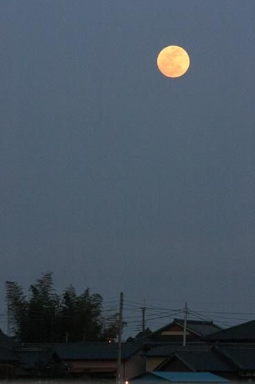 Moonrise_100228